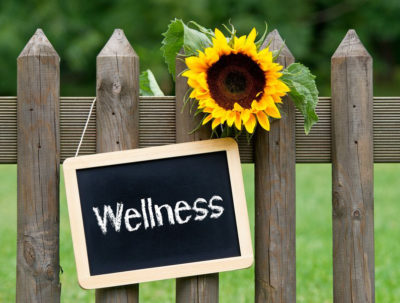Maintain wellness with acupuncture, herbal medicine and massage therapy at Axis Natural Medicine in Fort Myers.
